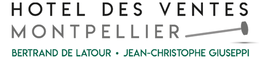 logo hotel des ventes